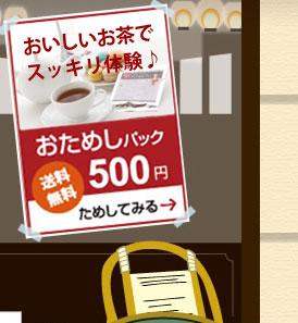 手軽に美味しくデトックスティーお試しパック500円